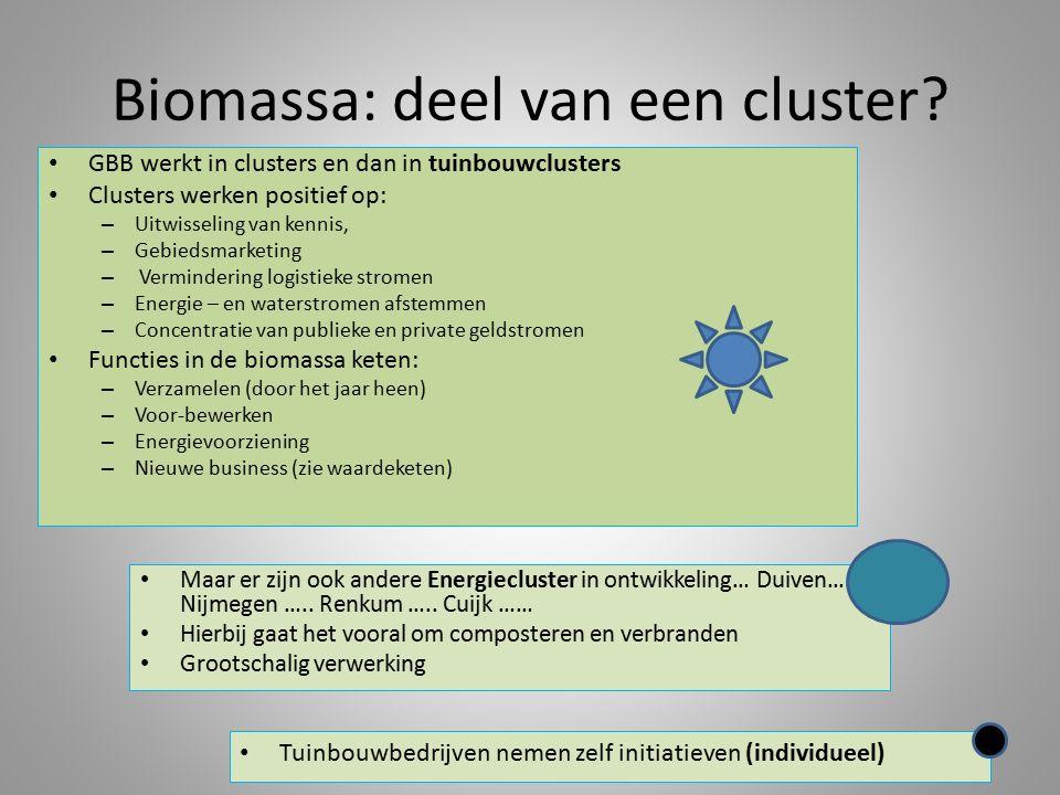 Biomassa: deel van een cluster.