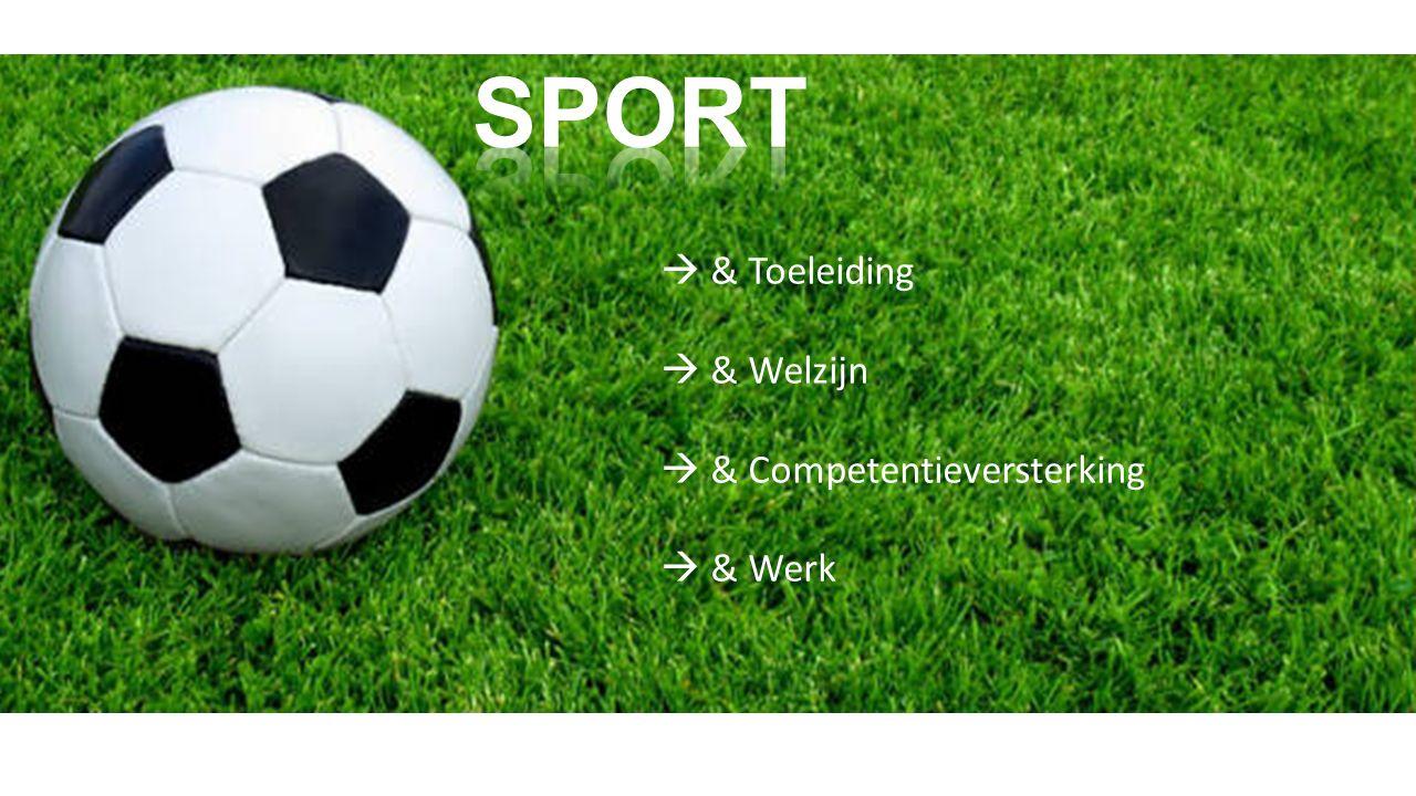  & Toeleiding  & Welzijn  & Competentieversterking  & Werk