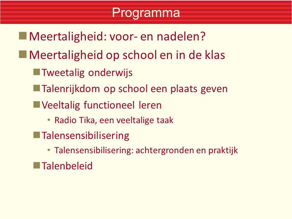 Programma Meertaligheid: voor- en nadelen.