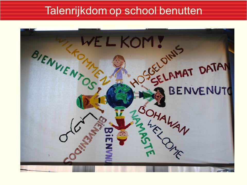 Talenrijkdom op school benutten