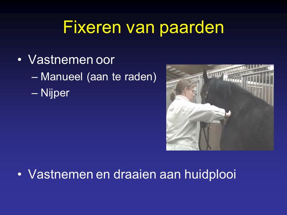 Fixeren van paarden Vastnemen oor –Manueel (aan te raden) –Nijper Vastnemen en draaien aan huidplooi