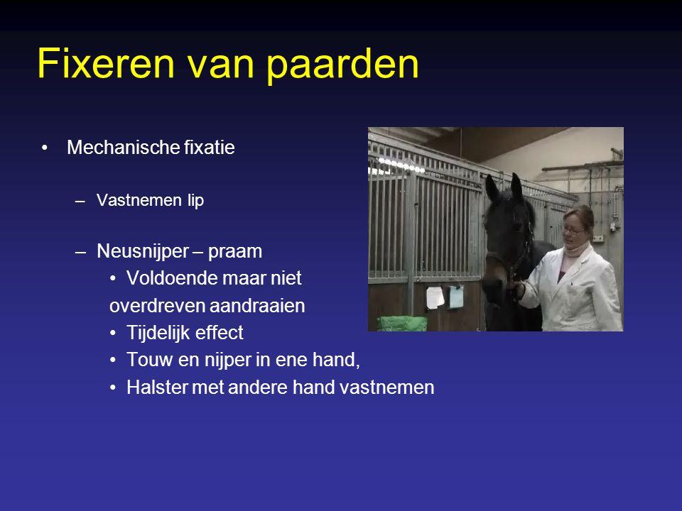 Fixeren van runderen Medicamenteuze sedatie –Injectie sedativum (Rompun) –Schieten met sedativum