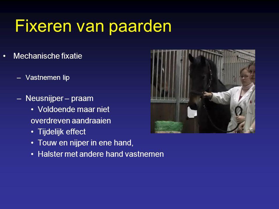 Omleggen runderen: –Manueel met boeien –Medicamenteus Omleggen kalf: –Plooien hoofd en vastnemen in liesplooi Fixeren van runderen