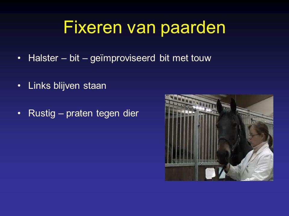 Fixeren van paarden Mechanische fixatie –Vastnemen lip –Neusnijper – praam Voldoende maar niet overdreven aandraaien Tijdelijk effect Touw en nijper in ene hand, Halster met andere hand vastnemen