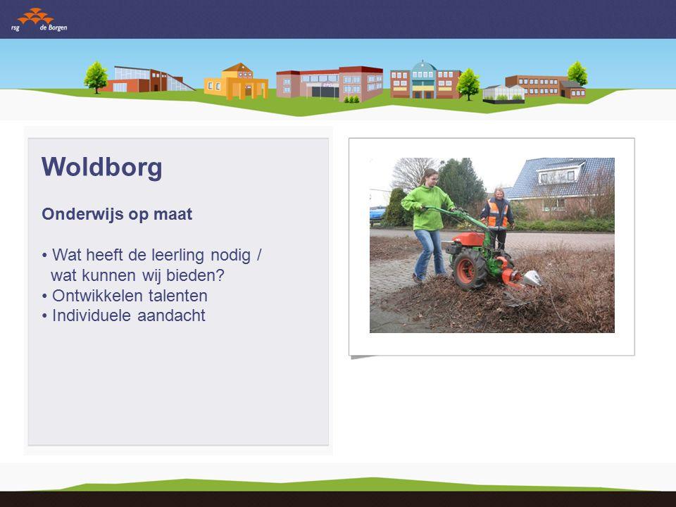 Woldborg Leren buiten en binnen school Voorbereiden op maatschappij Gemeente/provincie project Internationalisering Werkweek klas 3 Maatschappelijke stage