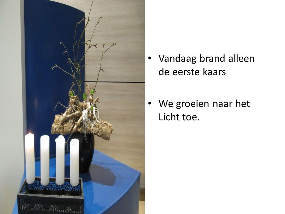 Gemengd koor 'The Spirit of Joy' en Jongerenkoor 'Carry the Light' o.l.v.