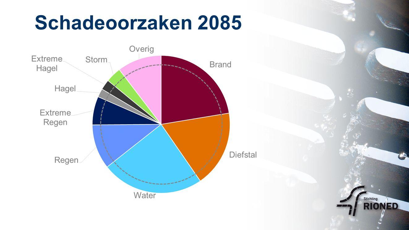 Schadeoorzaken 2085