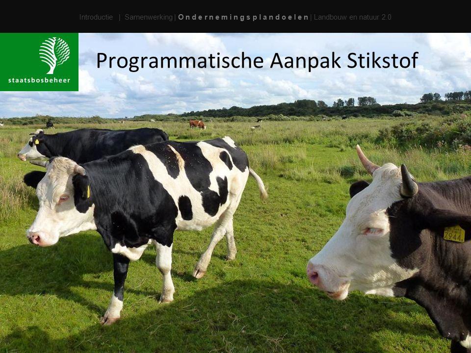 Programmatische Aanpak Stikstof
