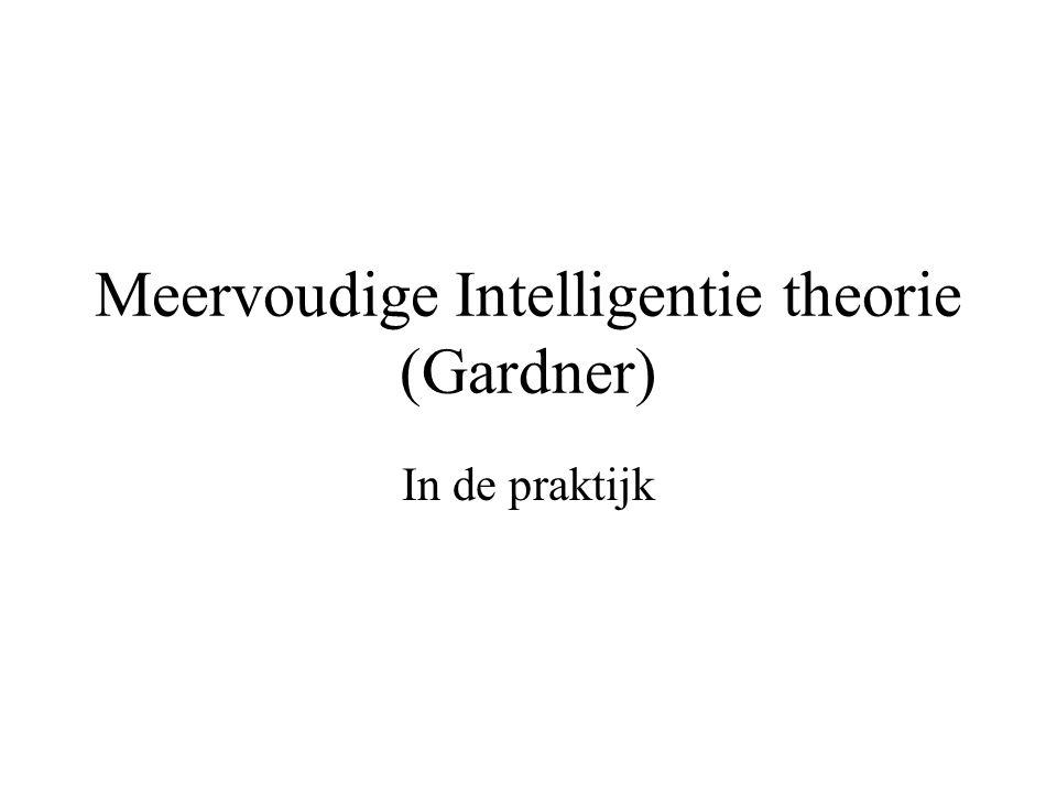 Meervoudige Intelligentie theorie (Gardner) In de praktijk