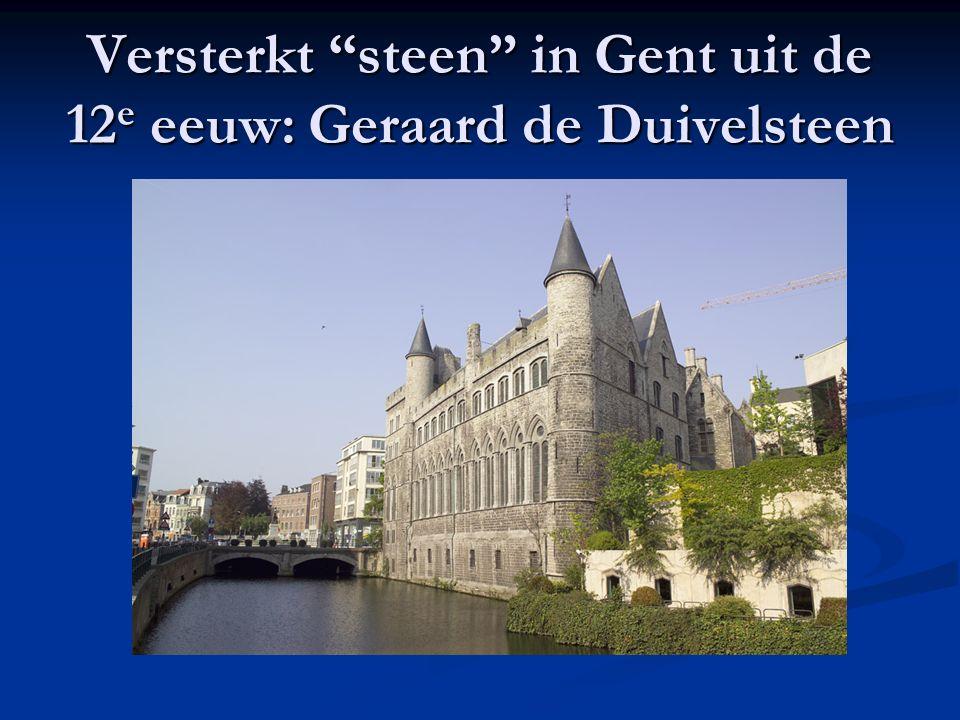 """Versterkt """"steen"""" in Gent uit de 12 e eeuw: Geraard de Duivelsteen"""
