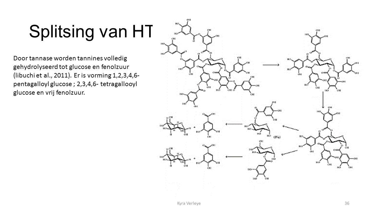 Splitsing van HT Kyra Verleye36 Door tannase worden tannines volledig gehydrolyseerd tot glucose en fenolzuur (libuchi et al., 2011).