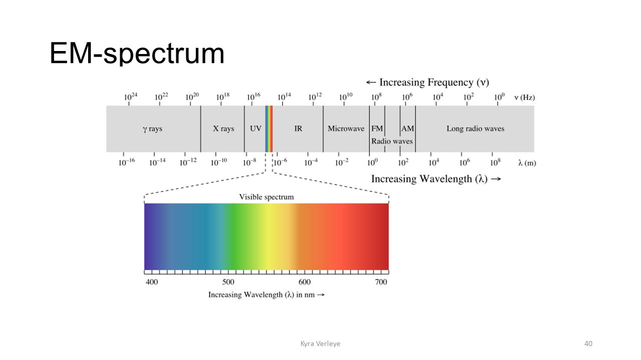 EM-spectrum Kyra Verleye40