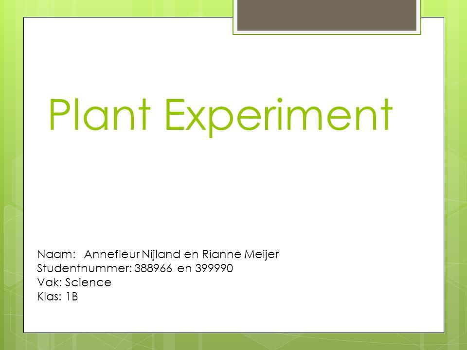 Plant Experiment Naam:Annefleur Nijland en Rianne Meijer Studentnummer: 388966en 399990 Vak: Science Klas: 1B
