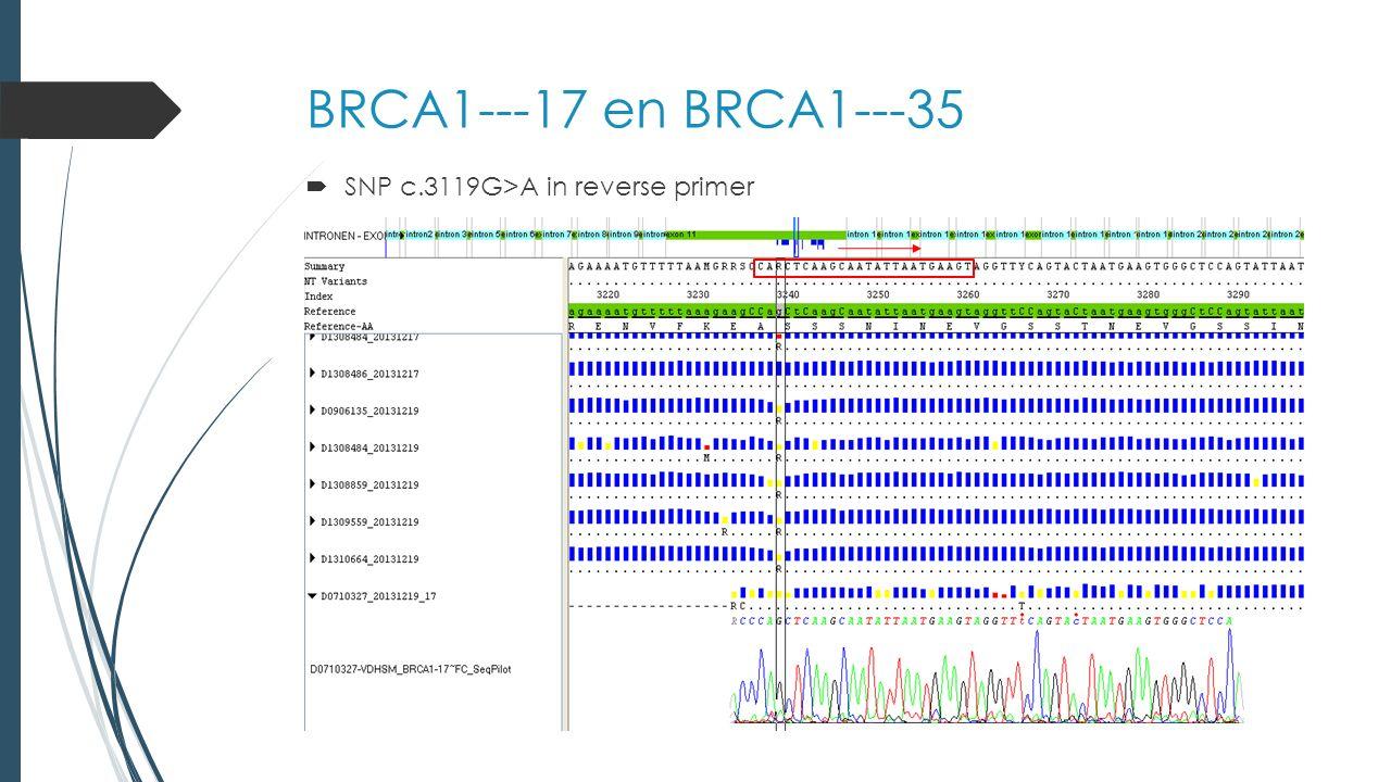 BRCA1---17 en BRCA1---35  SNP c.3119G>A in reverse primer
