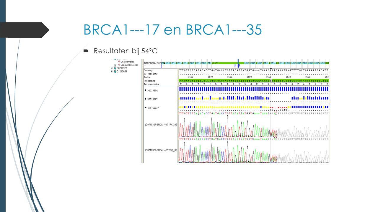 BRCA1---17 en BRCA1---35  Resultaten bij 54°C