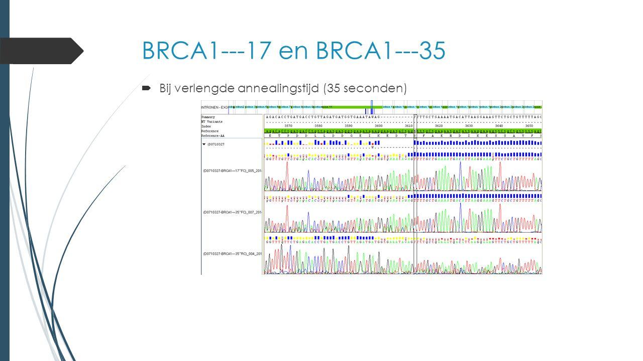 BRCA1---17 en BRCA1---35  Bij verlengde annealingstijd (35 seconden)