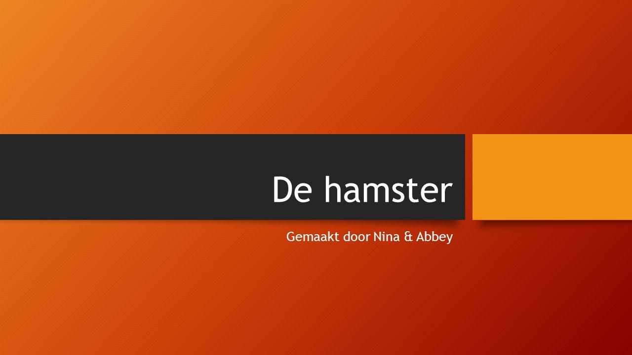 De hamster Gemaakt door Nina & Abbey