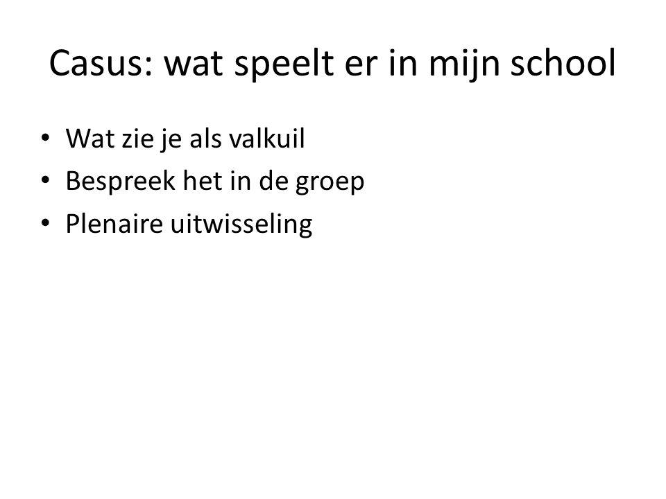 Casus: wat speelt er in mijn school Wat zie je als valkuil Bespreek het in de groep Plenaire uitwisseling