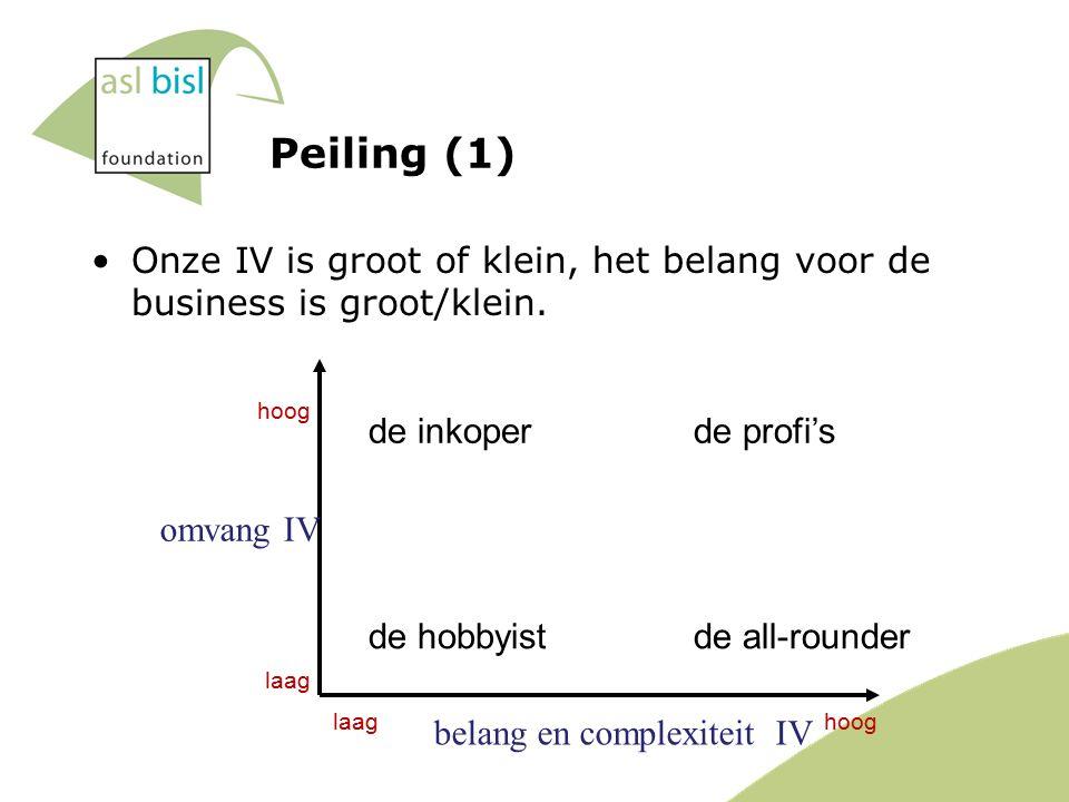 Peiling (1) Onze IV is groot of klein, het belang voor de business is groot/klein.