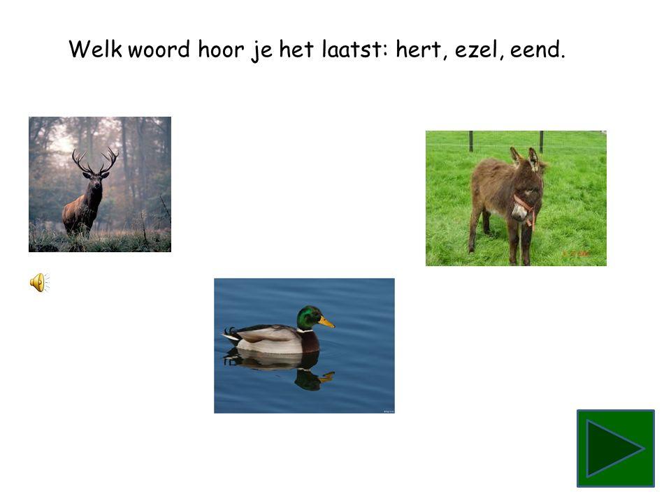 Welk woord hoor je het laatst: ezel, eend, hert.