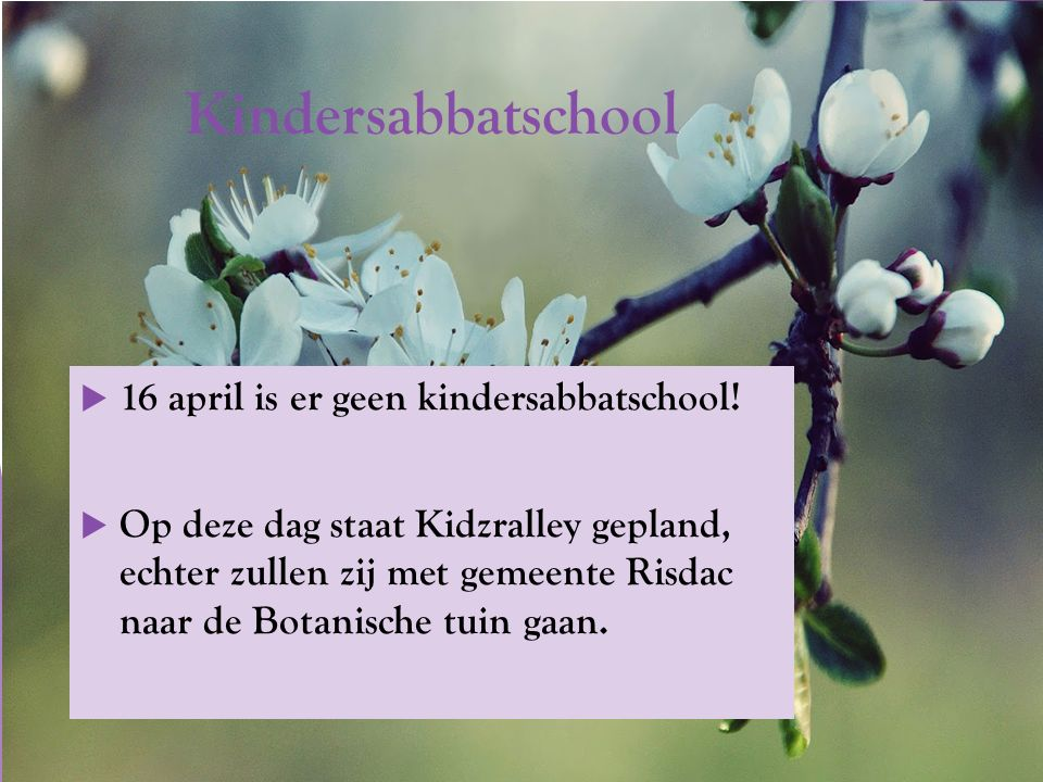 Kindersabbatschool  16 april is er geen kindersabbatschool.