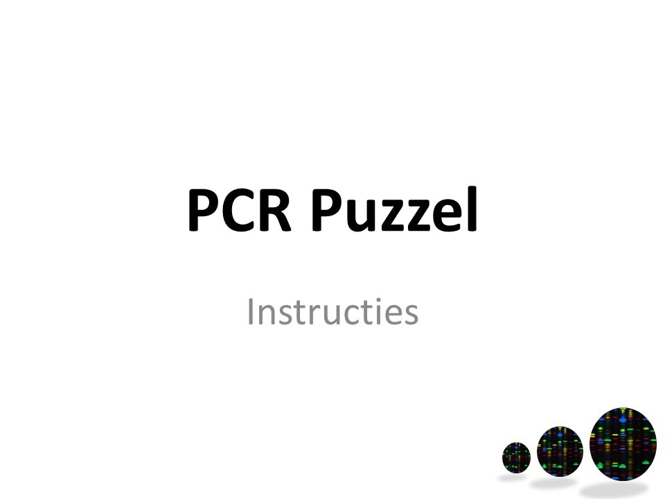 PCR Puzzel Instructies