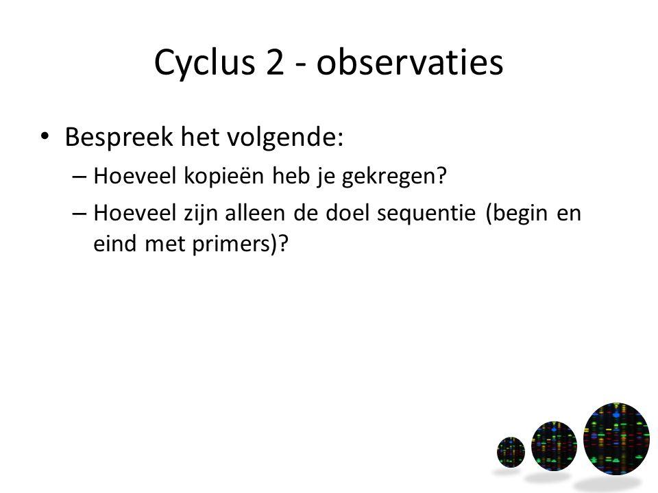 Cyclus 2 - observaties Bespreek het volgende: – Hoeveel kopieën heb je gekregen? – Hoeveel zijn alleen de doel sequentie (begin en eind met primers)?