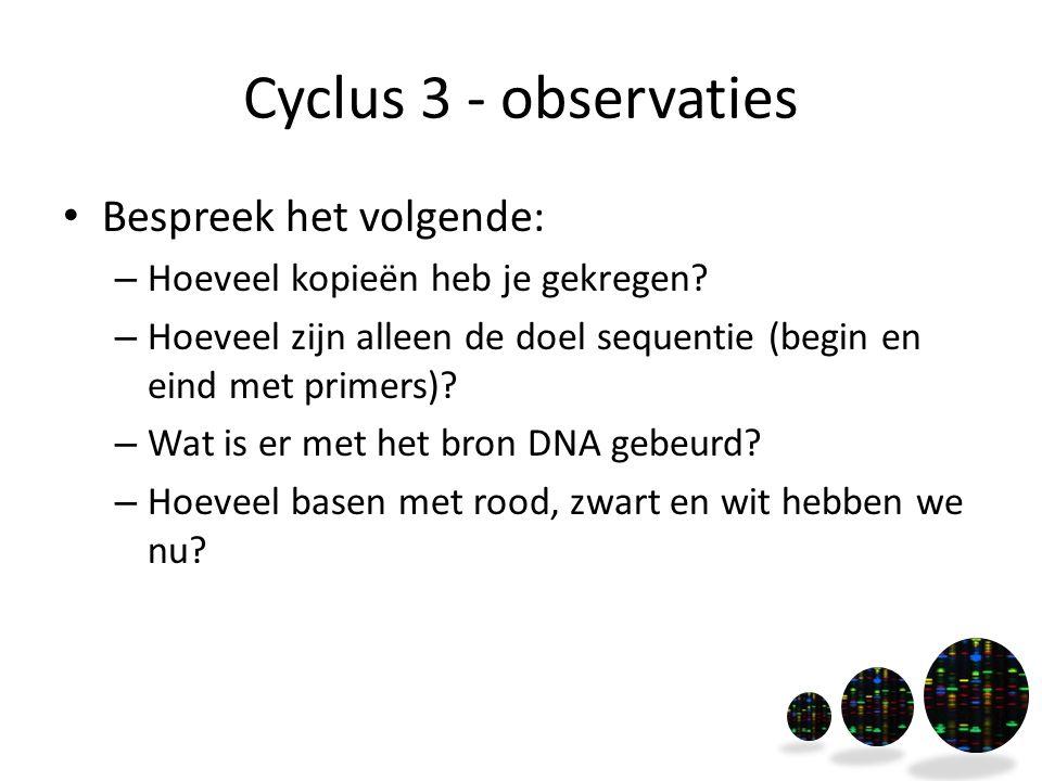Cyclus 3 - observaties Bespreek het volgende: – Hoeveel kopieën heb je gekregen? – Hoeveel zijn alleen de doel sequentie (begin en eind met primers)?