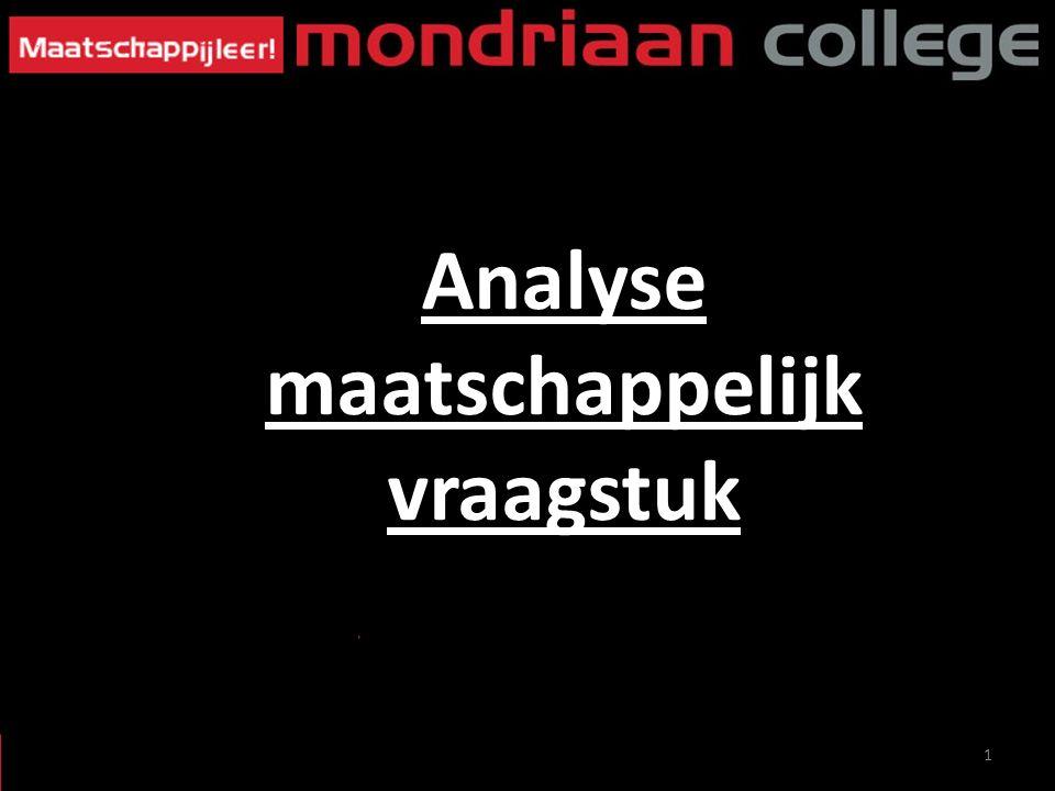 1 Analyse maatschappelijk vraagstuk