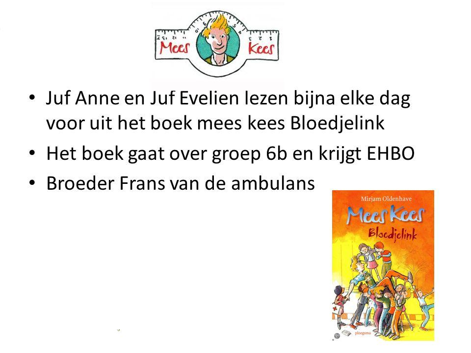 Juf Anne en Juf Evelien lezen bijna elke dag voor uit het boek mees kees Bloedjelink Het boek gaat over groep 6b en krijgt EHBO Broeder Frans van de ambulans