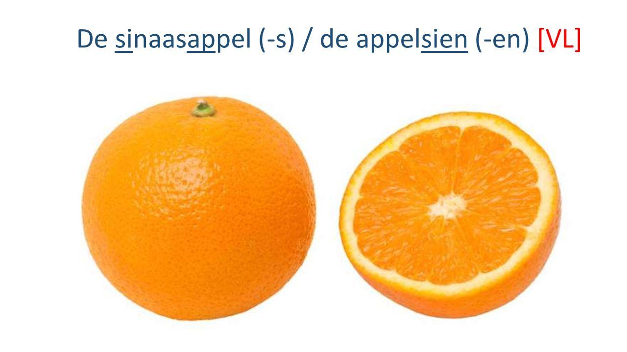 De sinaasappel (-s) / de appelsien (-en) [VL]