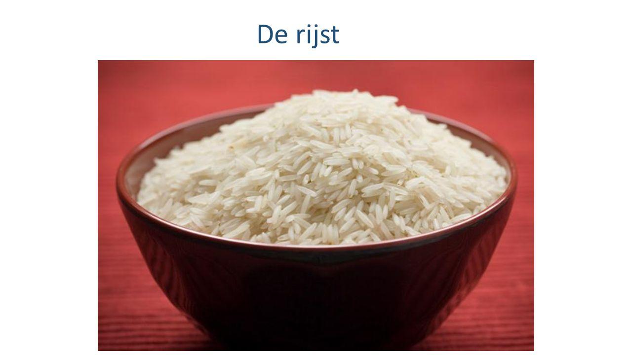 De rijst