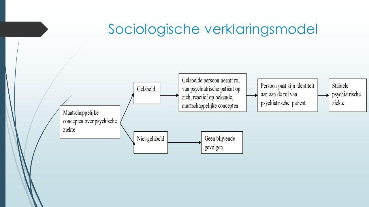 Sociologische verklaringsmodel