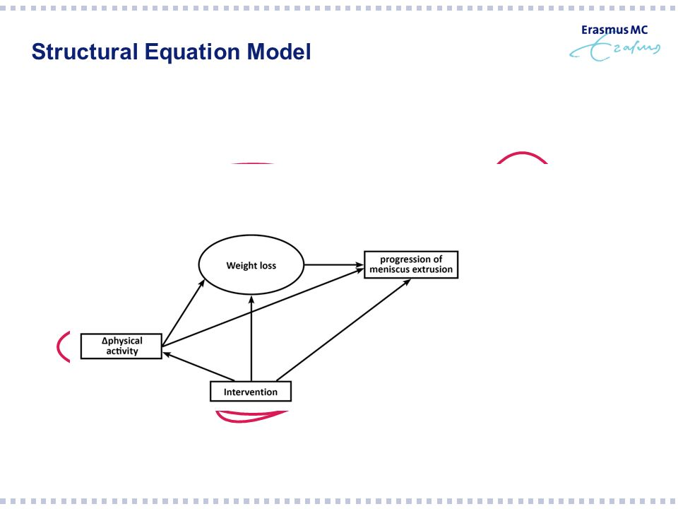 Structural Equation Model - + - + - +