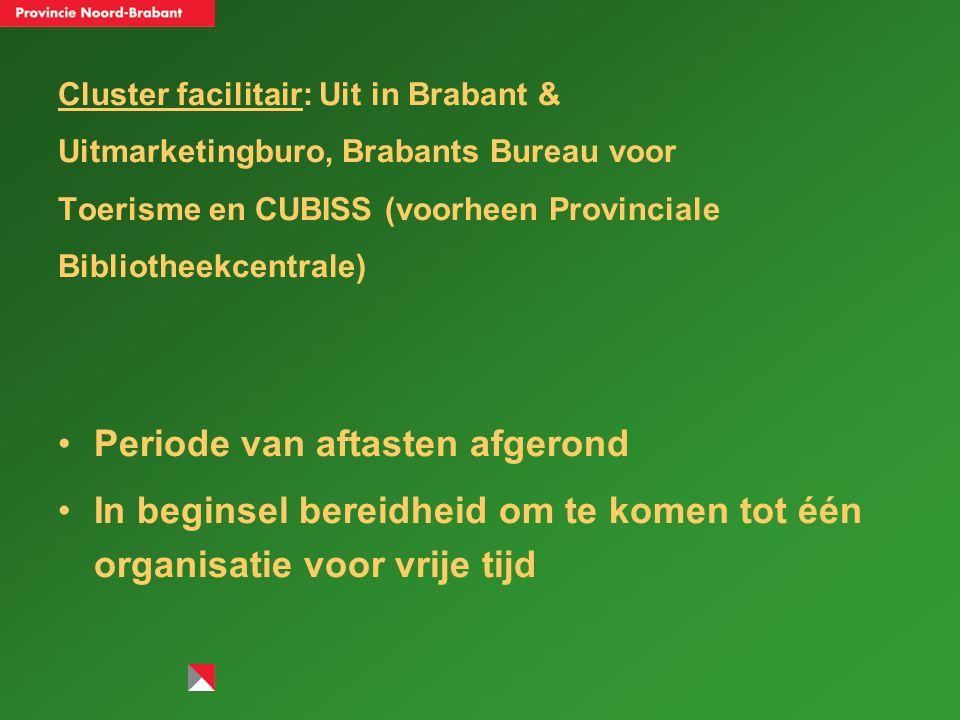 Cluster professionele Kunsten: Nieuwe Brabantse Kunststichting (NBKS), Stichting Actuele Muziek Brabant (Stamb), Stichting Brabant POP, Vereniging van Brabantse Filmtheaters (VBF) en Literair Informatiepunt Brabant (Libra).