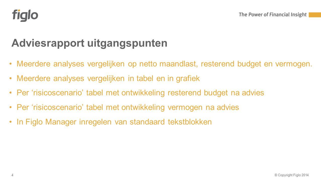 Agenda-slide Adviesrapport uitgangspunten © Copyright Figlo 20144 Meerdere analyses vergelijken op netto maandlast, resterend budget en vermogen. Meer