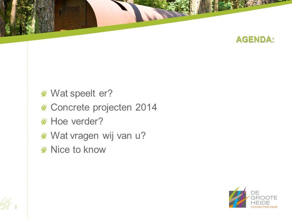 AGENDA: Wat speelt er? Concrete projecten 2014 Hoe verder? Wat vragen wij van u? Nice to know 2