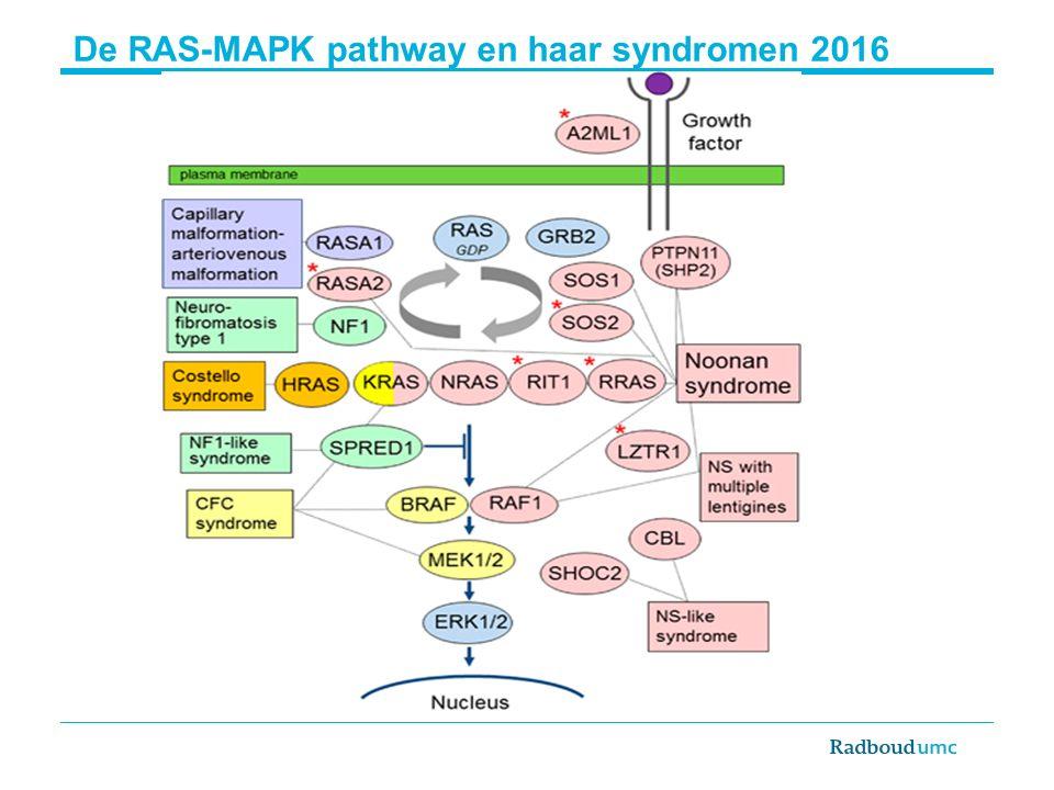 De RAS-MAPK pathway en haar syndromen 2016