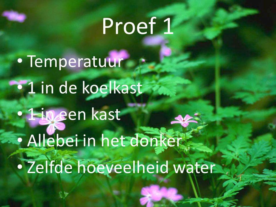 Proef 1 Temperatuur 1 in de koelkast 1 in een kast Allebei in het donker Zelfde hoeveelheid water