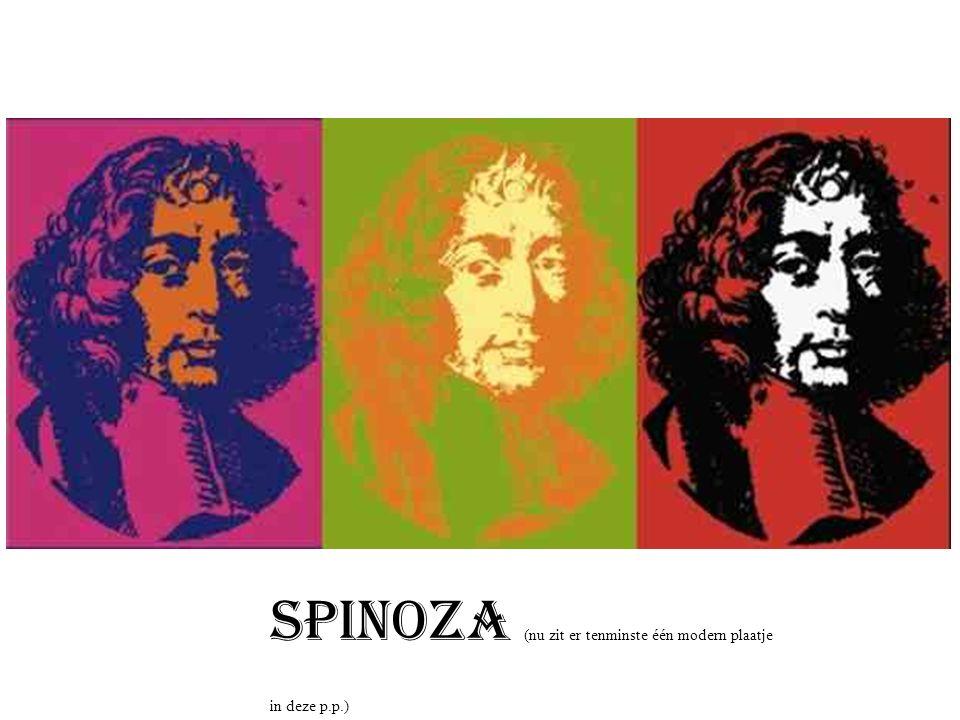 Spinoza: De wonderbaarlijk mooie en slim werkende natuur om je heen = god !.