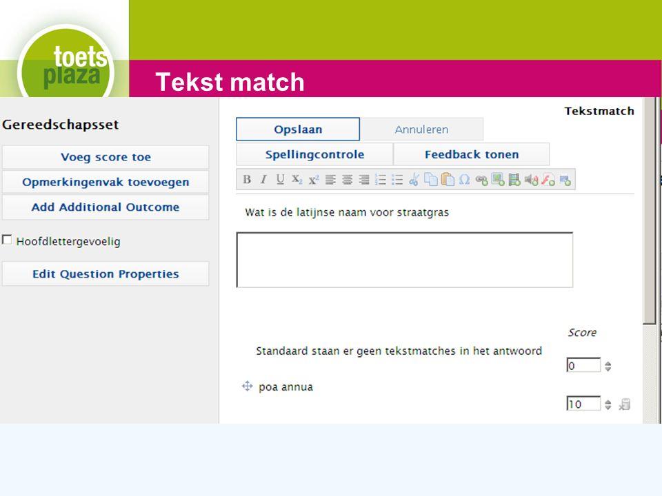 Expertiseteam Toetsenbank Tekst match