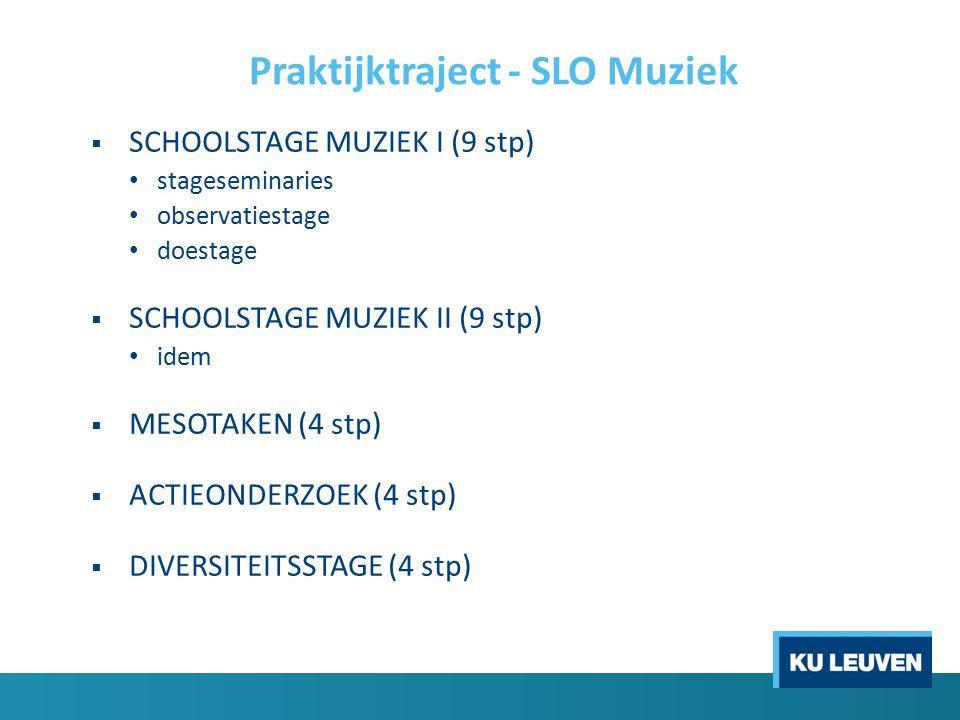 Praktijktraject - SLO Muziek  SCHOOLSTAGE MUZIEK I (9 stp) stageseminaries observatiestage doestage  SCHOOLSTAGE MUZIEK II (9 stp) idem  MESOTAKEN (4 stp)  ACTIEONDERZOEK (4 stp)  DIVERSITEITSSTAGE (4 stp)