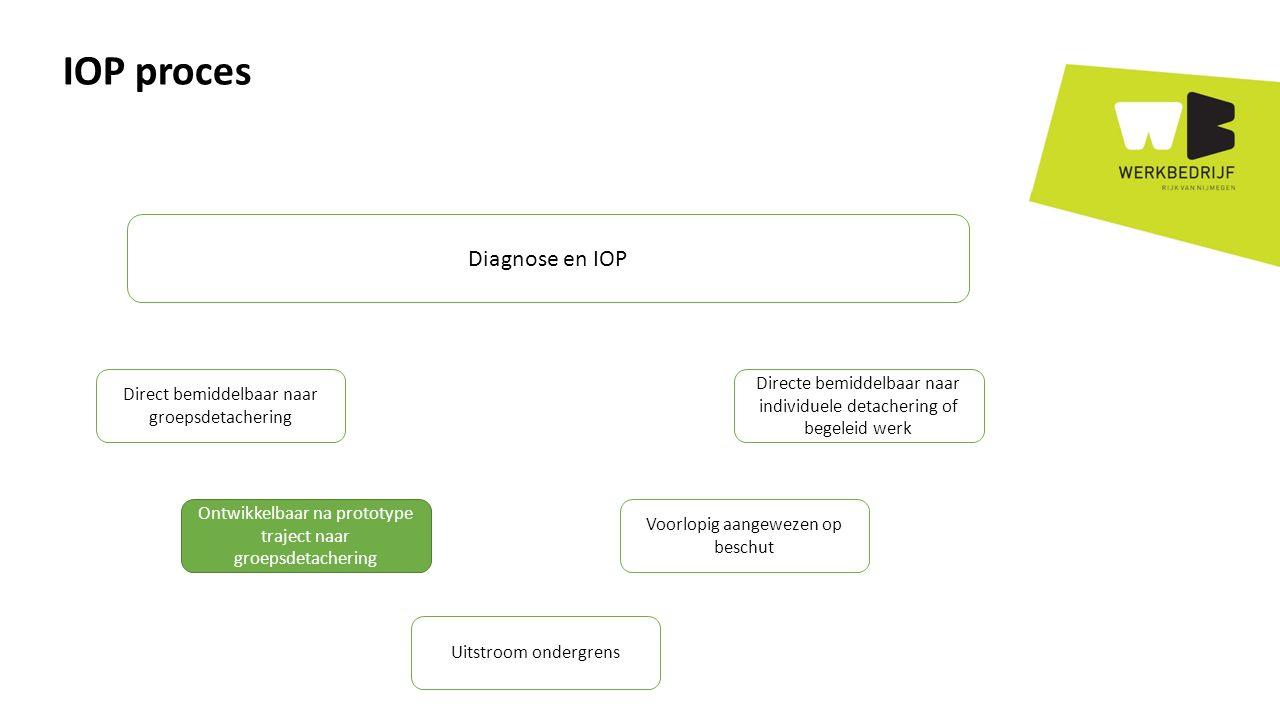 IOP proces Diagnose en IOP Direct bemiddelbaar naar groepsdetachering Ontwikkelbaar na prototype traject naar groepsdetachering Uitstroom ondergrens Voorlopig aangewezen op beschut Directe bemiddelbaar naar individuele detachering of begeleid werk