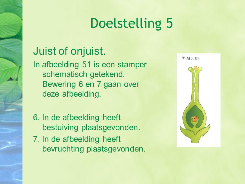 Doelstelling 5 Juist of onjuist. In afbeelding 51 is een stamper schematisch getekend. Bewering 6 en 7 gaan over deze afbeelding. 6. In de afbeelding