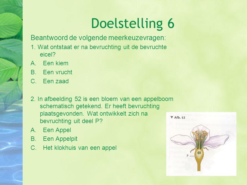 Doelstelling 6 Beantwoord de volgende meerkeuzevragen: 1. Wat ontstaat er na bevruchting uit de bevruchte eicel? A.Een kiem B.Een vrucht C.Een zaad 2.