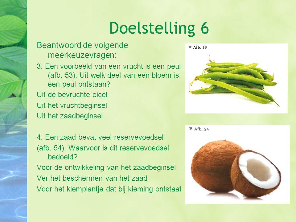 Doelstelling 6 Beantwoord de volgende meerkeuzevragen: 3. Een voorbeeld van een vrucht is een peul (afb. 53). Uit welk deel van een bloem is een peul