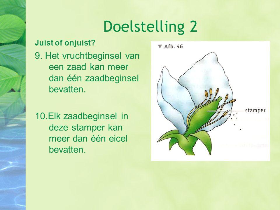 Doelstelling 8 Hier worden planten gebruikt waarvan delen kunnen worden gebruikt door de mens.