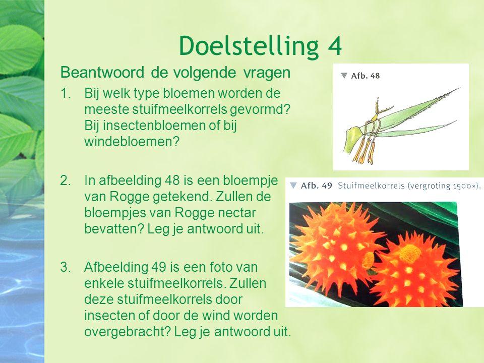 Doelstelling 4 Beantwoord de volgende vragen 1.Bij welk type bloemen worden de meeste stuifmeelkorrels gevormd? Bij insectenbloemen of bij windebloeme