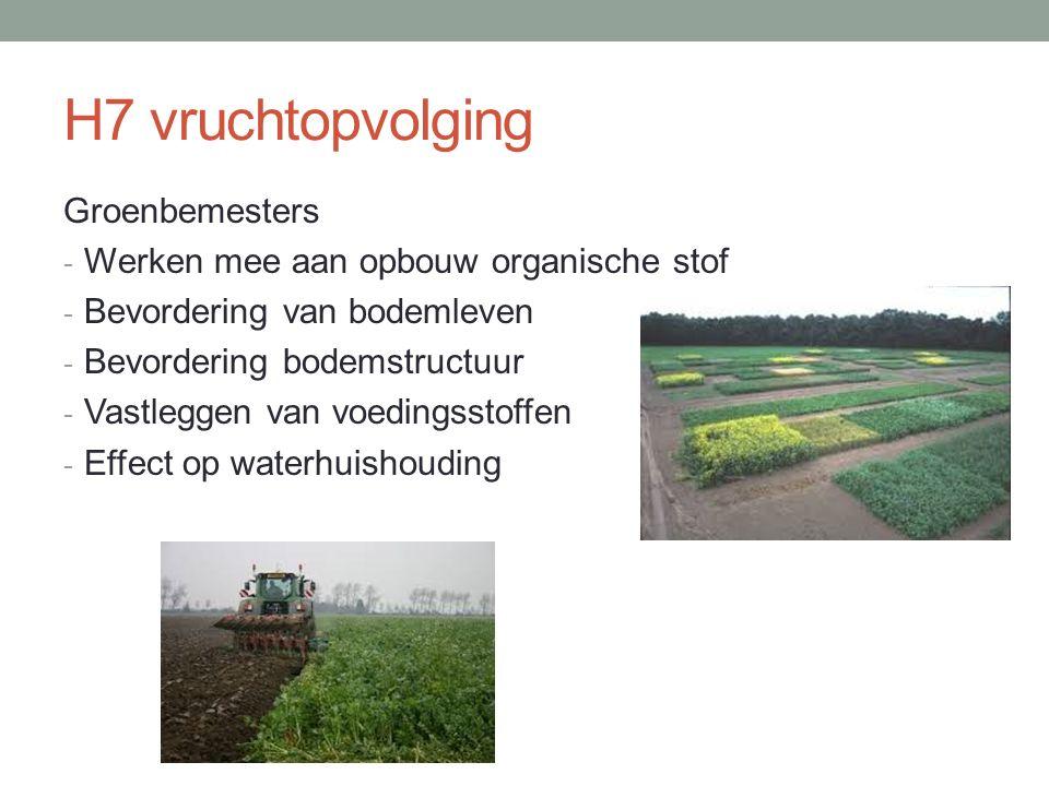 H7 vruchtopvolging Groenbemesters - Werken mee aan opbouw organische stof - Bevordering van bodemleven - Bevordering bodemstructuur - Vastleggen van v