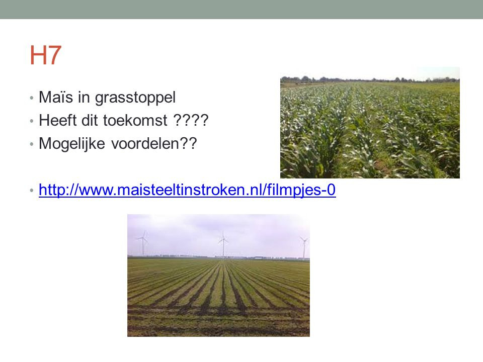 H7 Maïs in grasstoppel Heeft dit toekomst ???? Mogelijke voordelen?? http://www.maisteeltinstroken.nl/filmpjes-0